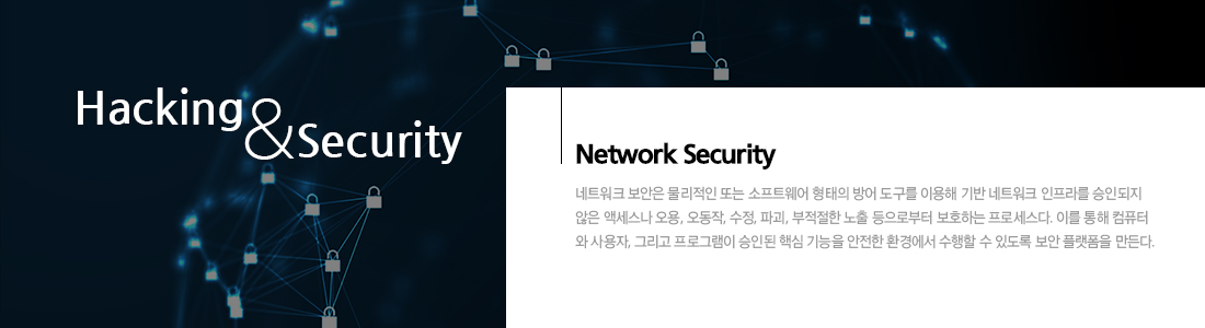 네트워크해킹 & 보안